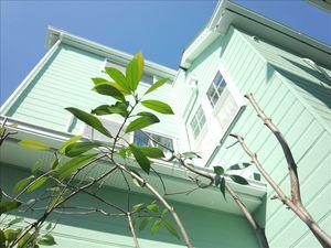 ホームアシスト(旧社名ザ・ペインターズ)(大阪府堺市)の店舗イメージ