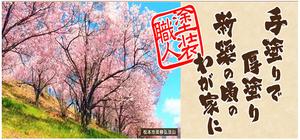 株式会社三上企画(長野県松本市)の店舗イメージ