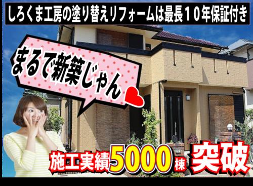 しろくま工房(岐阜県多治見市)の店舗イメージ