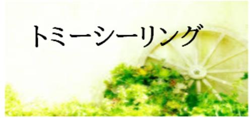 トミーシーリング(千葉県)の店舗イメージ